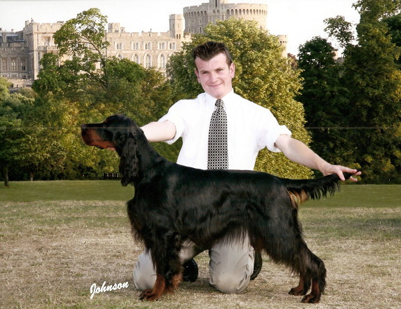 Man posing black and tan dog